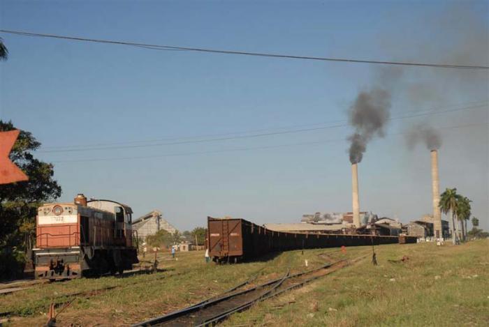 En el central Uruguay el 57 % del abastecimiento cañero se asume por el ferrocarril.