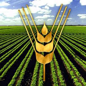 Organización de Naciones Unidas para la Alimentación y la Agricultura (FAO).