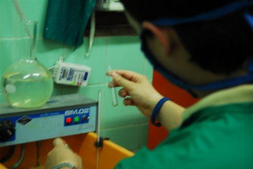 Varios medicamentos de producción nacional se prueban en el tratamiento de las enfermedades inmunológicas.