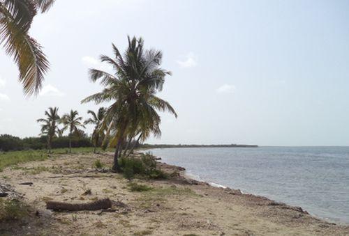 Vista de la playa en julio de este año que muestra los primeros cambios.