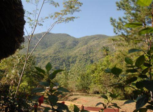 alturas de banao, sancti spiritus, medio ambiente, biodiversidad