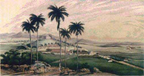"""Ingenio Buena Vista. Litografía de Eduardo Laplante, publicada en el libro """"Los ingenios"""", de Justo Germán Cantero. (1857)"""