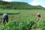 Convertir el Valle en un espacio sostenible constituye el principal desafío que enfrentan las fuerzas involucradas en la recuperación.