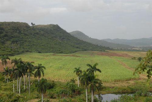 El área que se ha rescatado para la explotación agrícola y ganadera es la parte que está visible desde el Mirador.