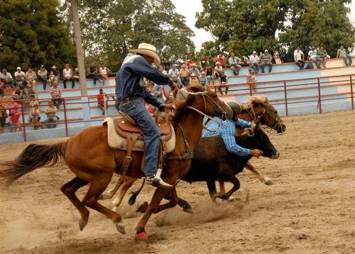 El público busca en la Feria disímiles propuestas recreativas y comerciales. Foto Brito.