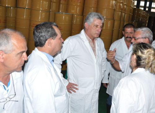 miguel diaz-canel, primer vicepresidente cubano, sancti spiritus, planta de miel, apicultura
