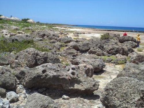 trinidad, litoral, citma, medio ambiente