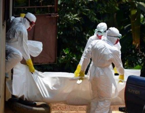 cuba, medicos cubanos, ebola, contingente henry reeve, africa occidental, premio nobel de la paz 2015