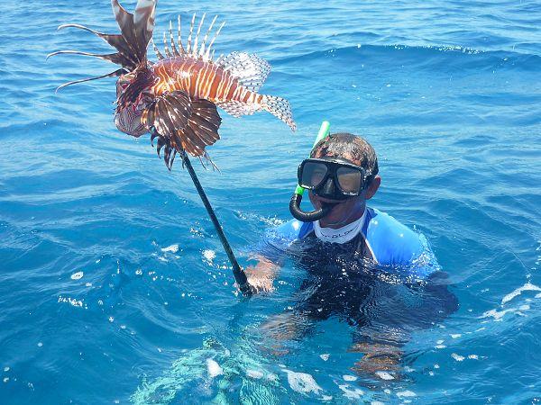 La única posibilidad de erradicar este pez es mediante su captura por el hombre; de ahí que se autorizó su pesca para disminuir su proliferación.