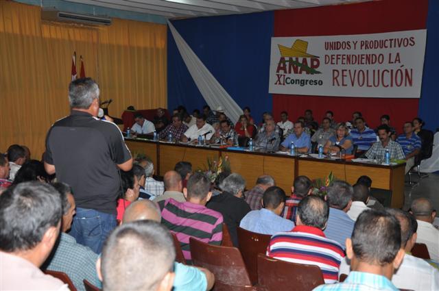 Varias intervenciones trataron acerca del funcionamiento interno de la organización y el área económica.