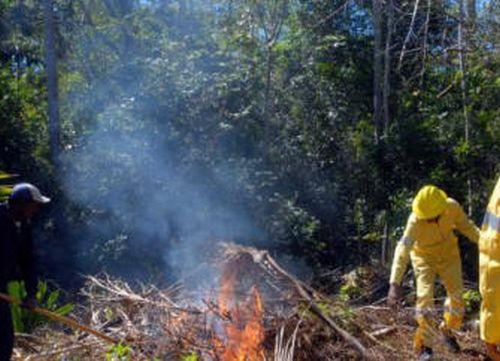 sancti spiritus, incendios forestales, bomberos, cuerpo de guardabosques