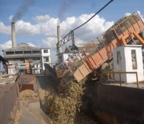 El Uruguay acaba de materializar  este lunes su plan de producción de azúcar. Foto Oscar Alfonso AIN.