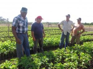 Salvador Valdés visitó el vivero tecnificado de la CCS Tony Alomá, de La Sierpe.