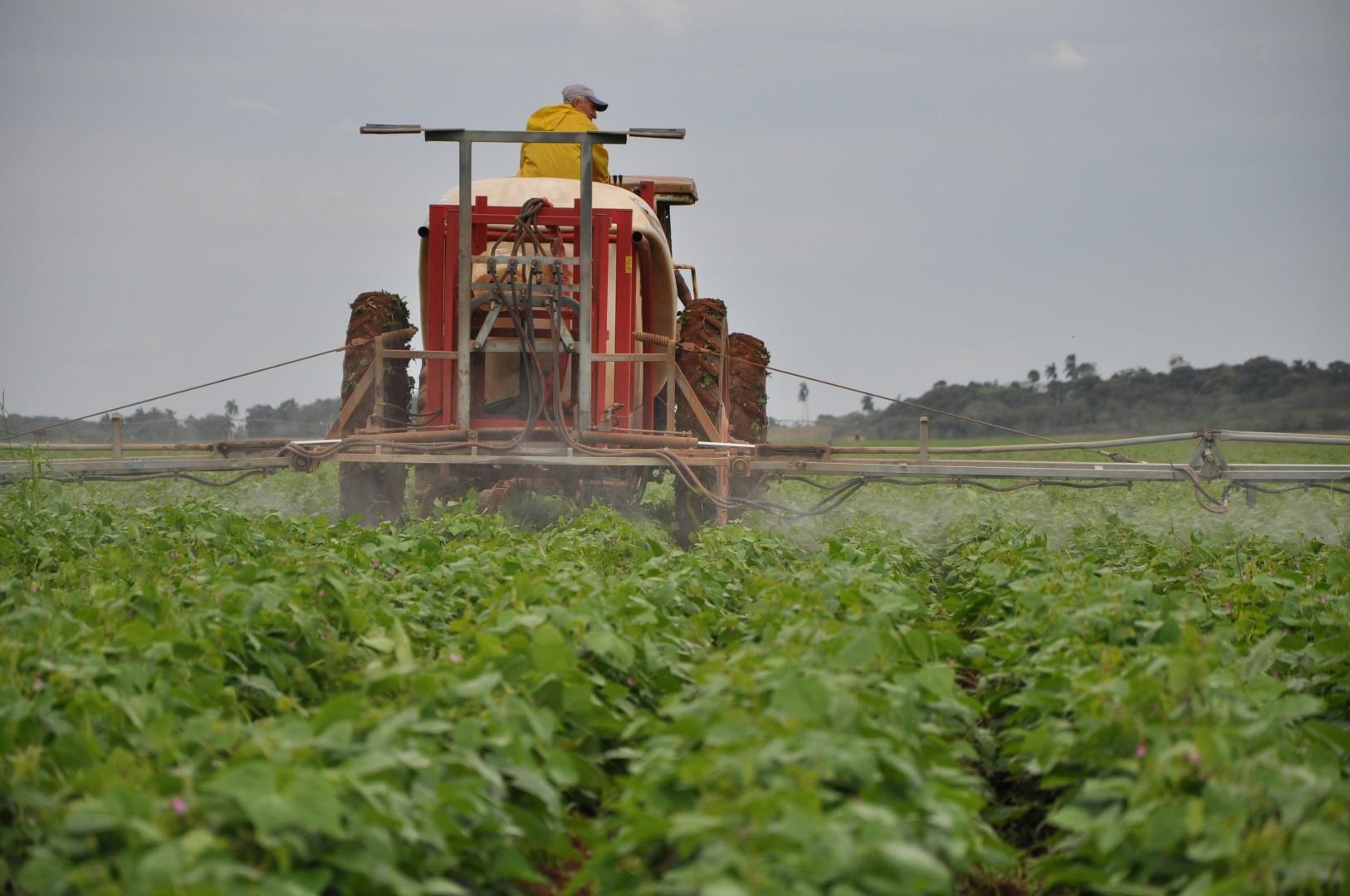 En Batey Colorado el empleo de la maquinaria favorece la atención a los cultivos.
