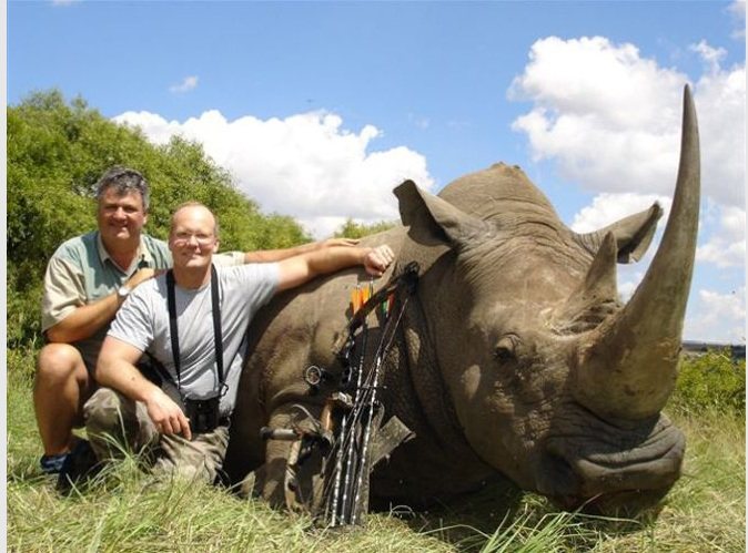 leon, animales, fauna, zimbabue,