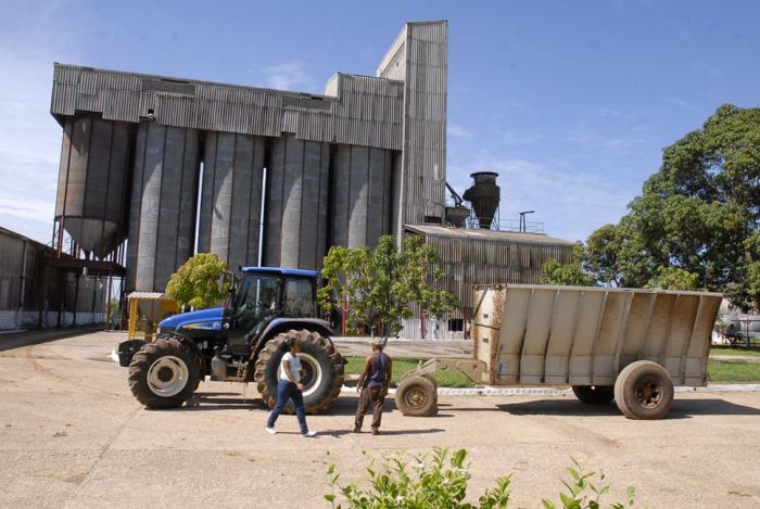 Varias instalaciones para el procesamiento industrial del arroz se han favorecido.