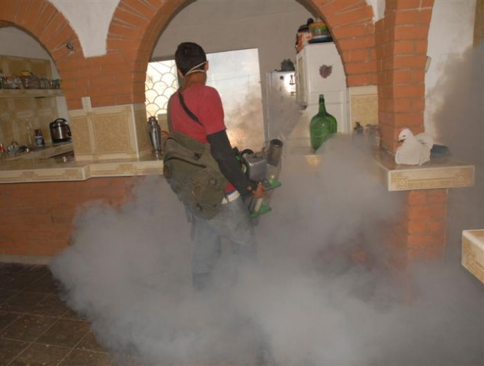 sancti spiritus, aedes aegypti, salud publica, fumigacion, dengue, higiene y epidemiologia, trinidad