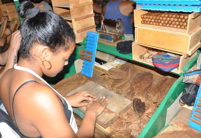 sancti spiritus, jatibonico, tabaco, tabaco torcido, fabrica de tabaco torcido, exportacion