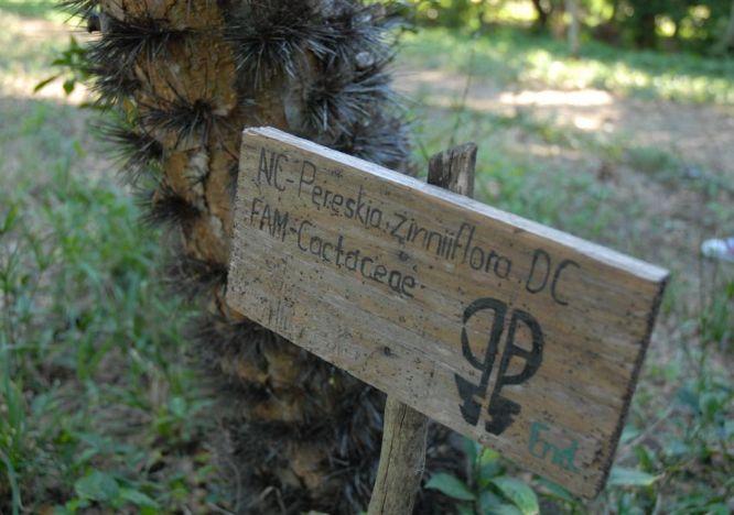 sancti spiritus, jardin botanico