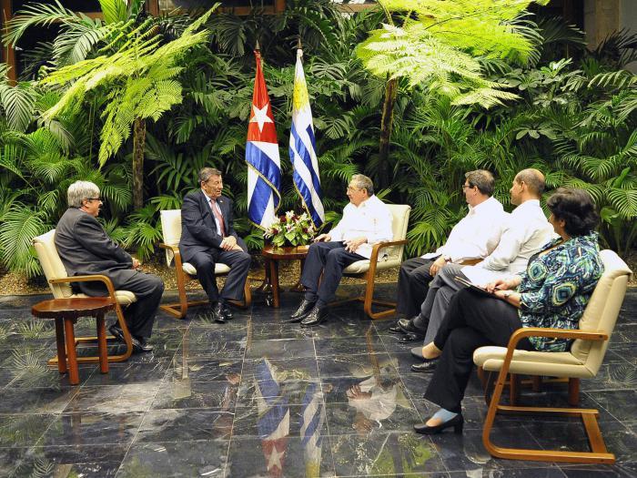 Raúl sostuvo un encuentro con el señor Rodolfo Nin Novoa, ministro de Relaciones Exteriores de la República Oriental del Uruguay, quien realiza una visita oficial a Cuba. (Foto: Estudios Revolución)