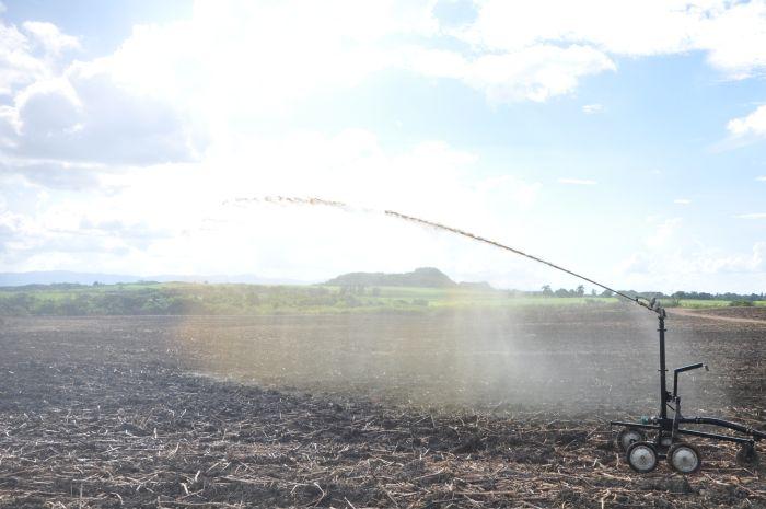 Con este sistema se evita sobremanera el peligro de contaminación y se reduce el gasto de fertilizante químico.