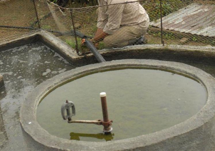 sancti spiritus, energis renovable, biogas
