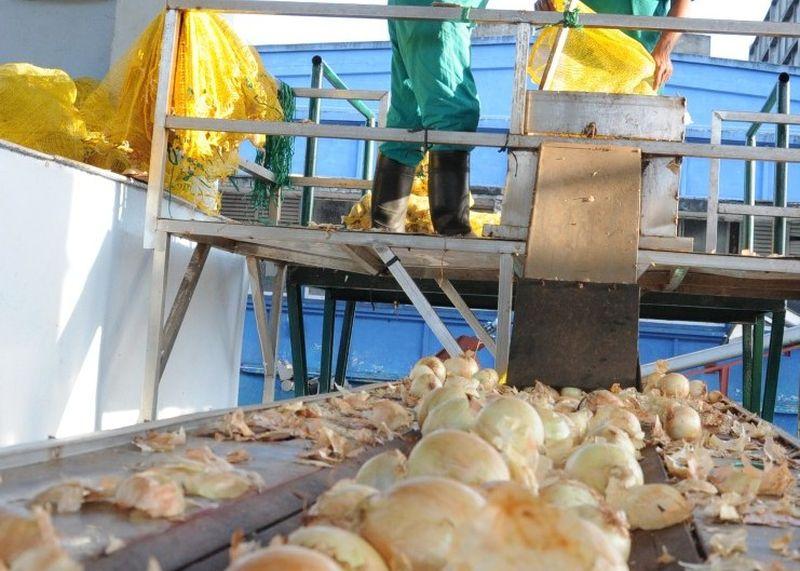 La línea para la elaboración de pulpa de cebolla tiene más de una década en explotación.