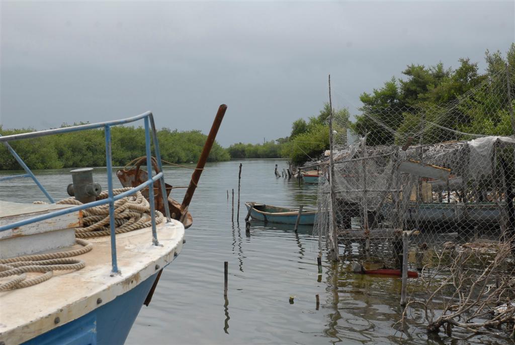 Las embarcaciones plásticas disponen de más confort para realizar las capturas. (Foto: Montos/Escambray)