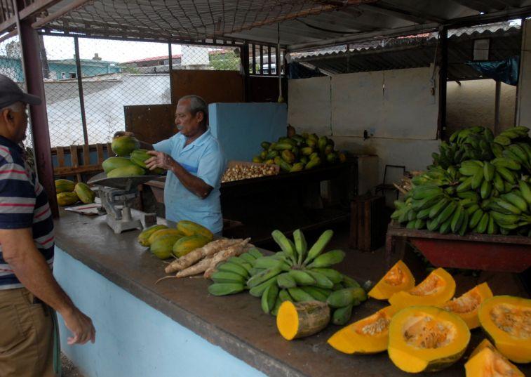 Las nuevas medidas para el ordenamiento de la comercialización de productos agrícolas entrarán en vigor este martes. (Foto Vicente Brito/Escambray)