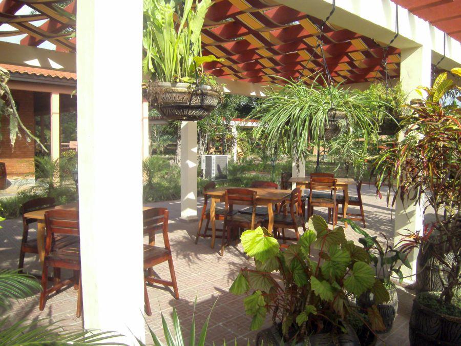 Bellos jardines y áreas exteriores distinguen la nueva imagen del local.
