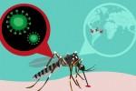 cuba, zika, salud publica