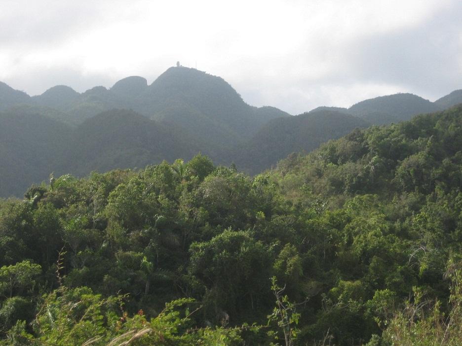 En el Pico San Juan se localizan las dos cavernas más altas de la región central de Cuba.