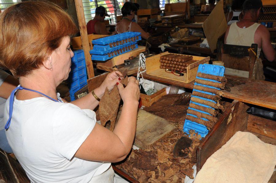 sancti spiritus, economia espirituana, triunfo de la revolucion cubana, agricultura