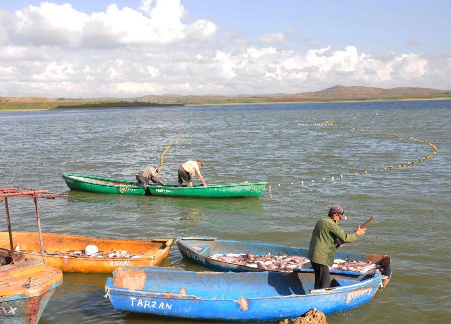 sancti spiritus, acuicultura, presa lebrije, pescaspir