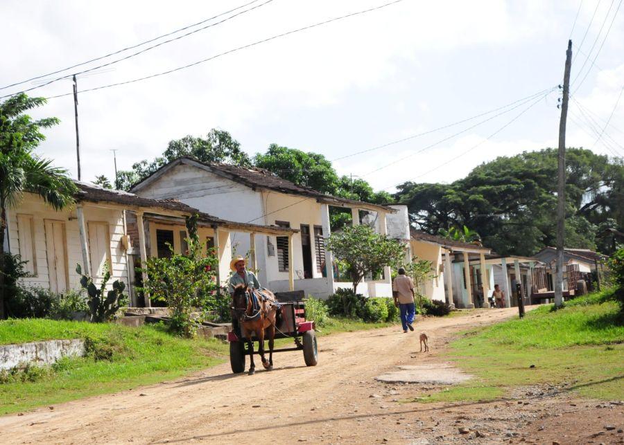 En una única calle, generalmente recogida, se ubican casi todas las viviendas y las instituciones de Jíquima de Alfonso.