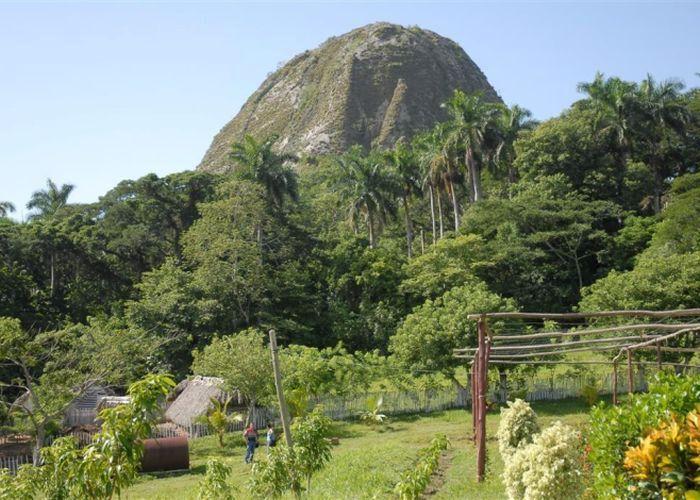 sancti spiritus, boscosidad, unidad territorial de flora y fauna