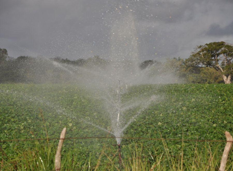 sancti spiritus, agricultura, sistema de riego