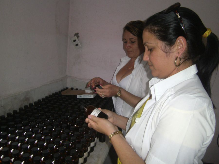 Production of natural medicine in Cuban province grew 8 pct