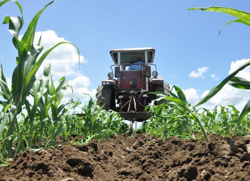 sancti spiritus, agricultura, campesinos,