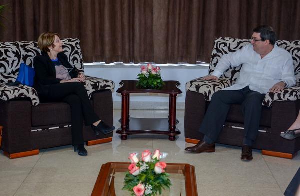 Relatora ONU, Cuba, Minrex, canciller, Bro Rodríguez