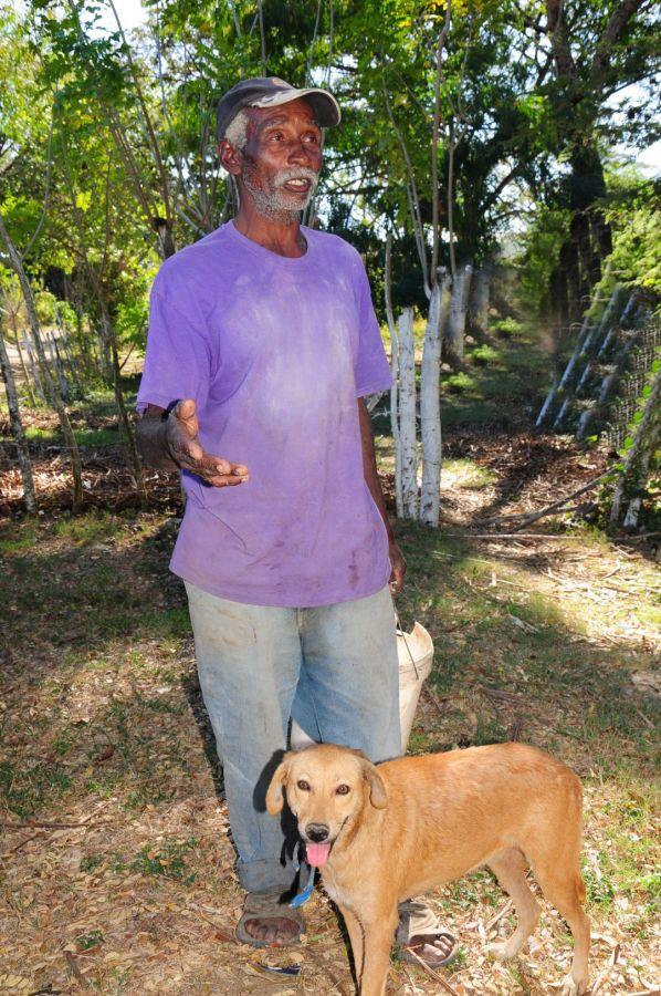 sancti spiritus, animales, asilo para perros