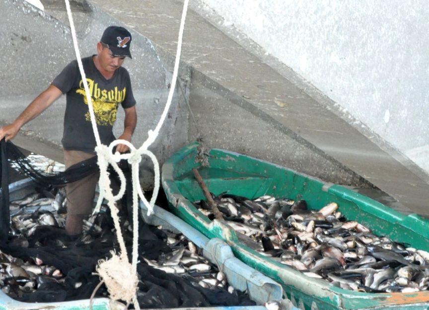 sancti spiritus, acuicultura, sequia, industria pesquera