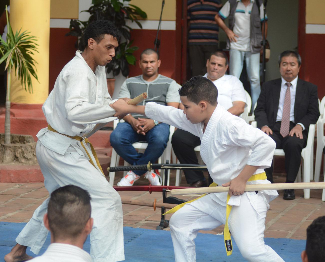 artes marciales, japón, cuba, casa de la guayabera, cultura
