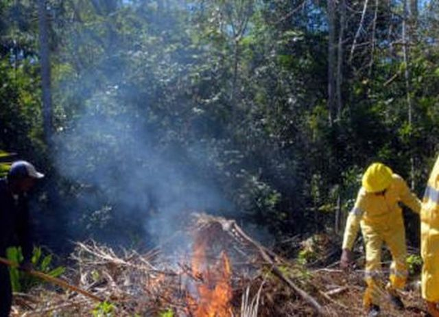 sancti spiritus, sequia, incendios forestales, guardabosques