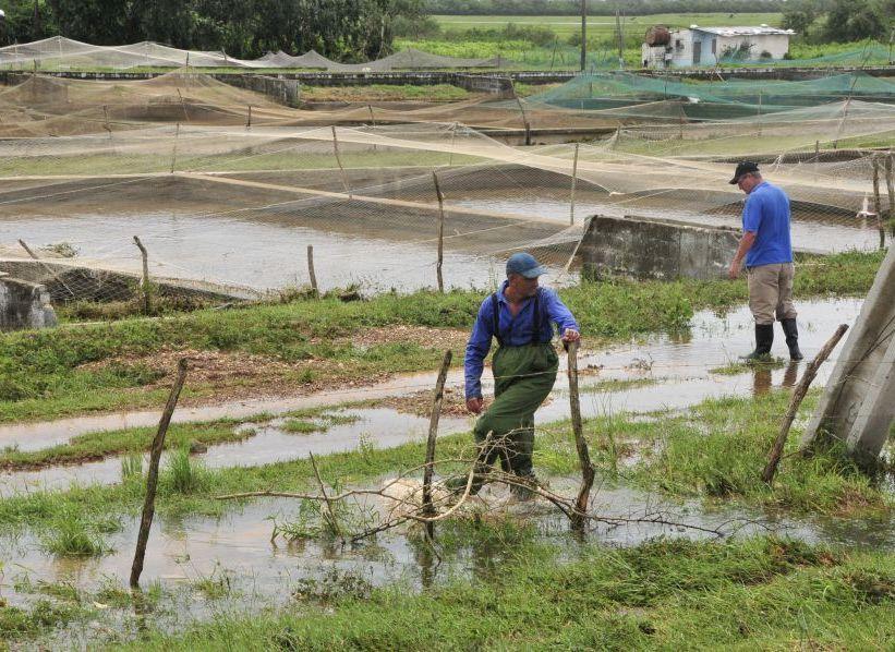 huracan irma, la sierpe, taguasco, defensa civil, estacion de alevinaje, sur del jibaro