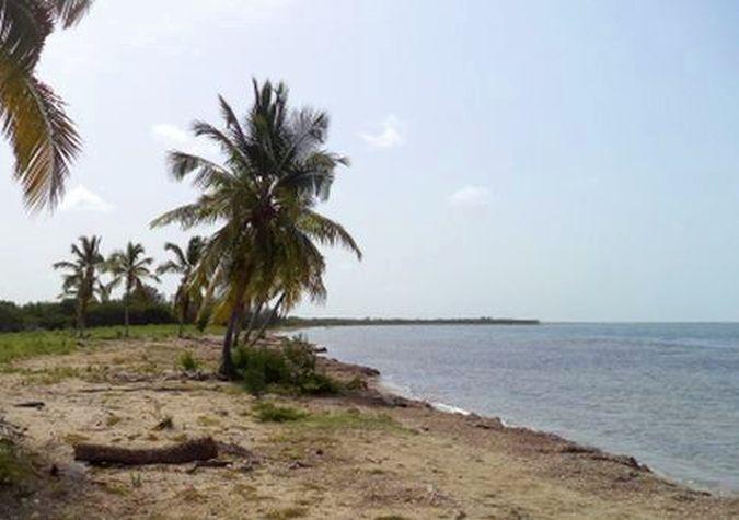 sancti spiritus, ciencia y tecnica, medio ambiente, citma, huracan irma, peninsula de ancon, litoral sur