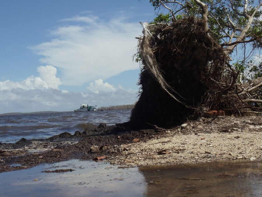 Yaguajay, huracán Irma, Playa Vitoria, recuepración