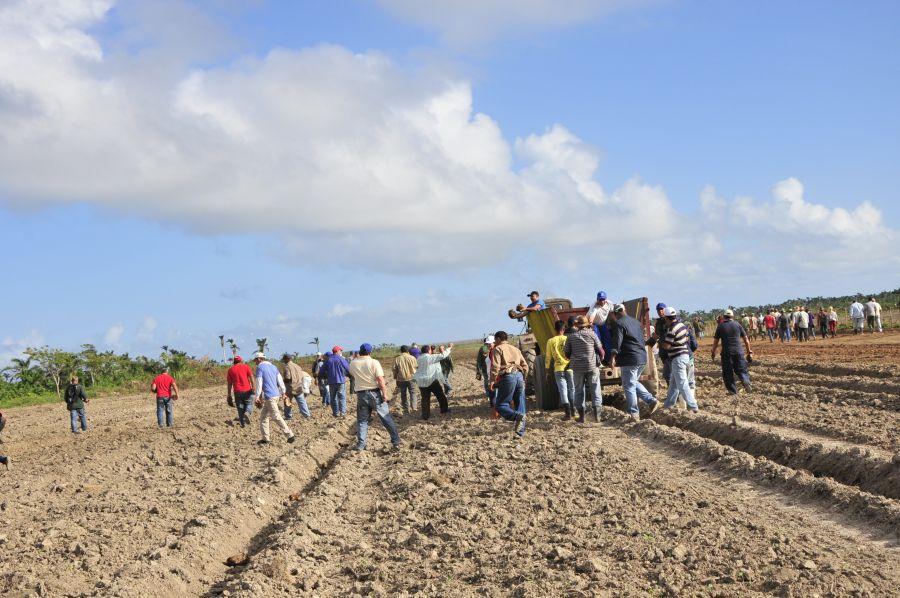 sancti spiritus, revolucion cubana, trabajo voluntario, yaguajay,