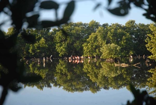 Caguanes, medio ambiente, Yaguajay, Sancti Spíritus