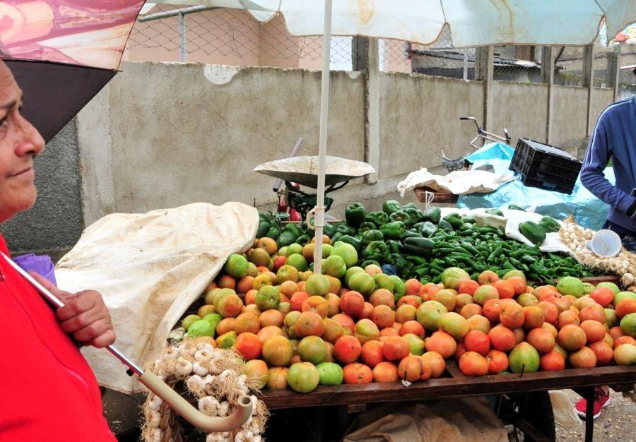 sancti spiritus, produccion de alimentos, precios alimentos, calidad de los productos, viandas hortalizas